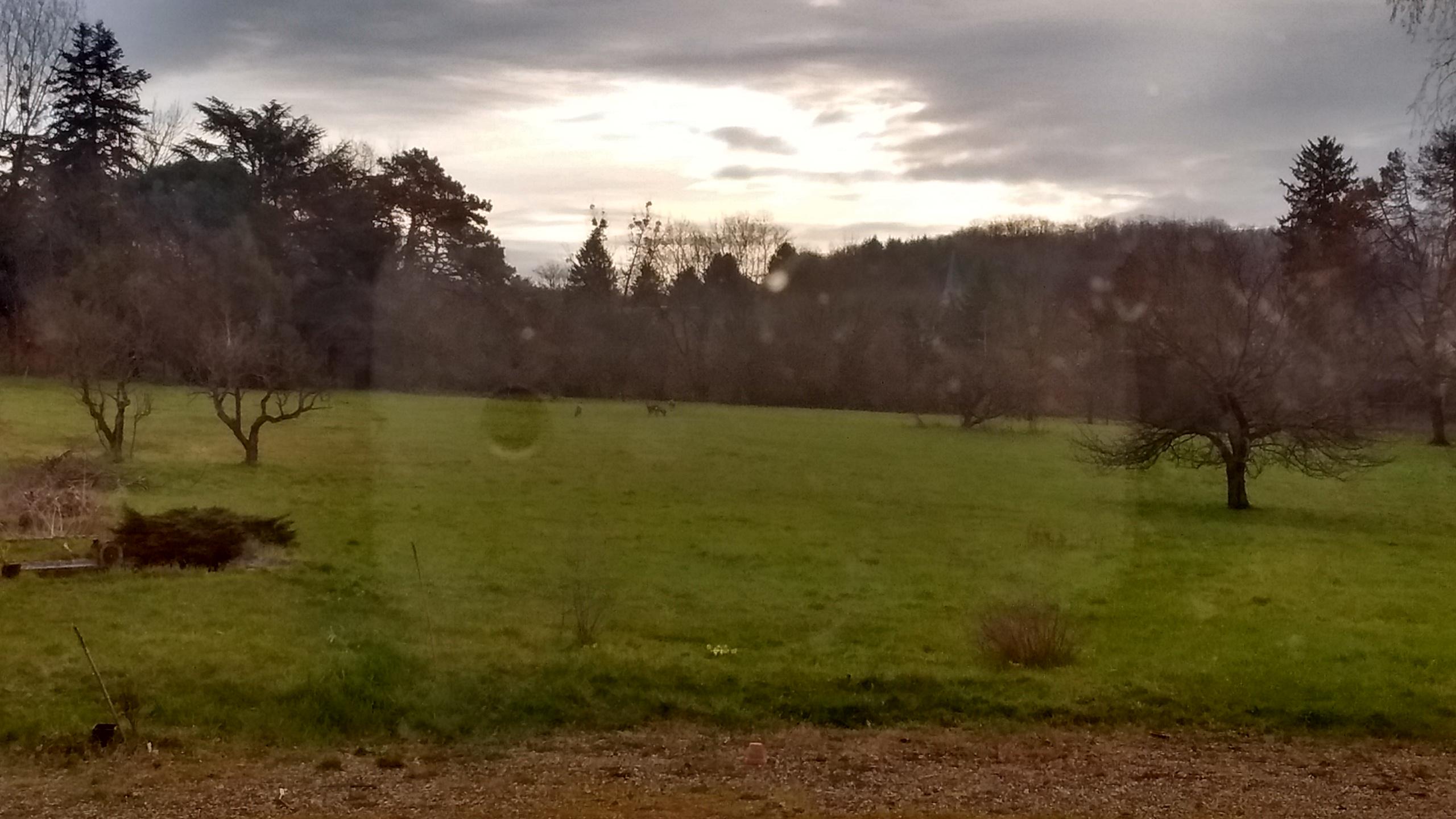 Parc du Clos à Reyrieux : vue vers l'Est
