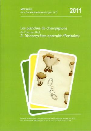Mémoire n°3